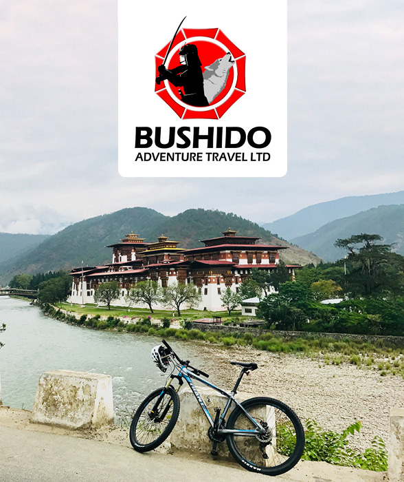 Bushido Homepage Ideasv22.jpg