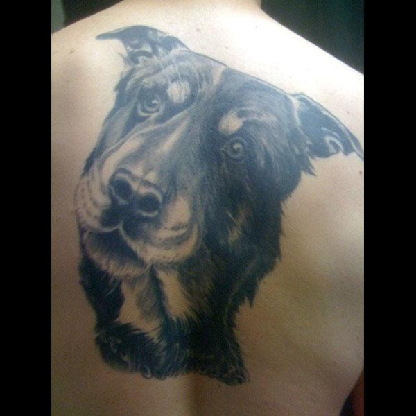 dog-back.jpg