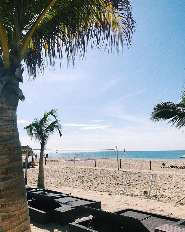 Beach vibes. 🇲🇽🌴 . . . . . #cabo #cabosanlucas #bajacalifornia #bajacaliforniasur #mexico #bachelorette #bachbash #beach #vacationmode #vacay #vsco #vscocam