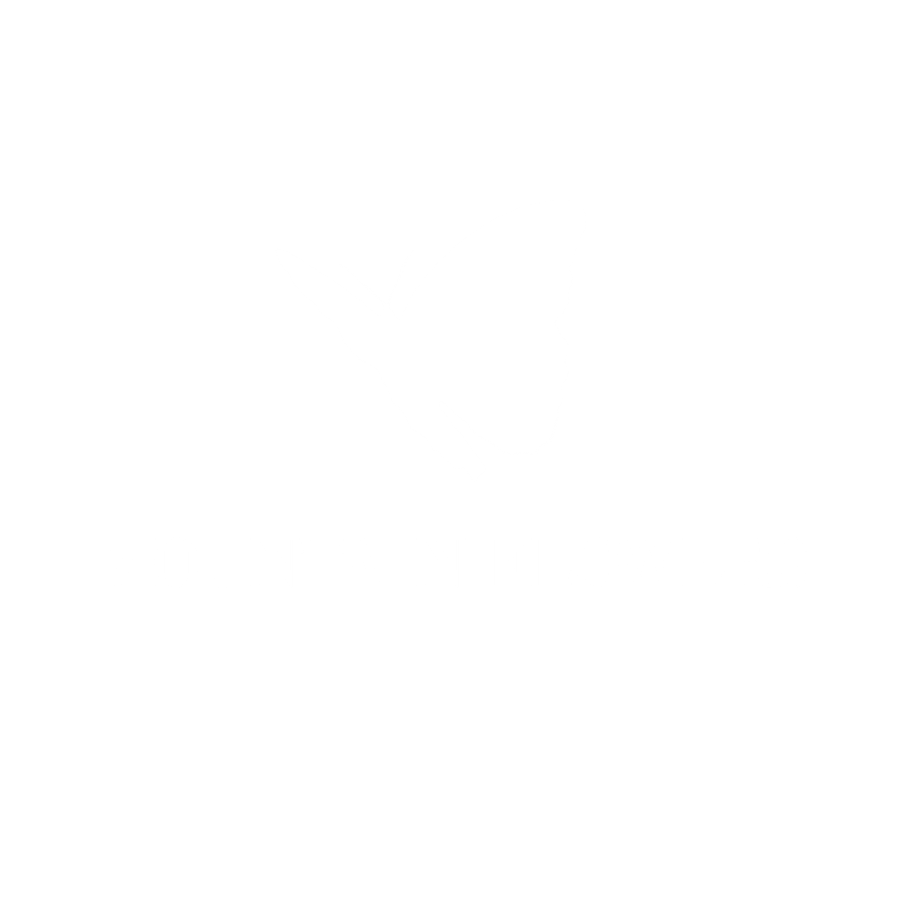 Mountain Valley Flowers of Aspen