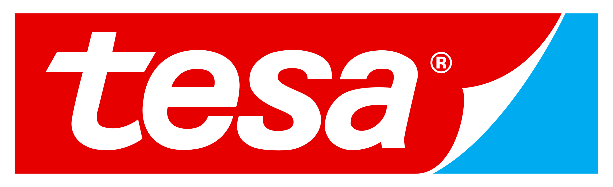 tesa.png