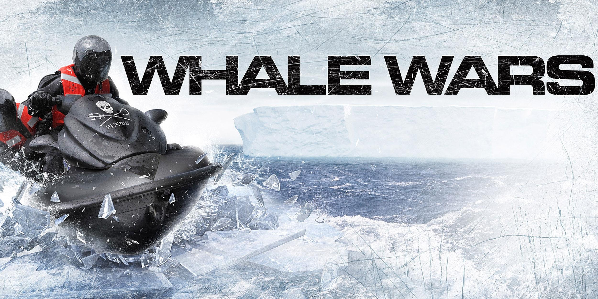 Whale-Wars-Big.jpg
