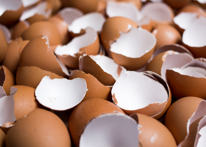 eggshells for osteoporosis