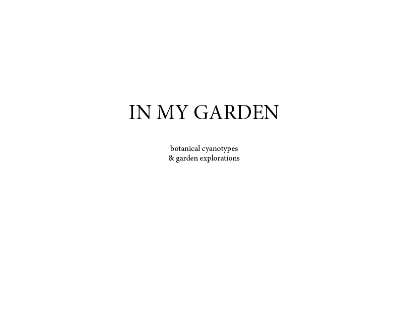201708_InMyGarden_Book_FINAL-001.jpg