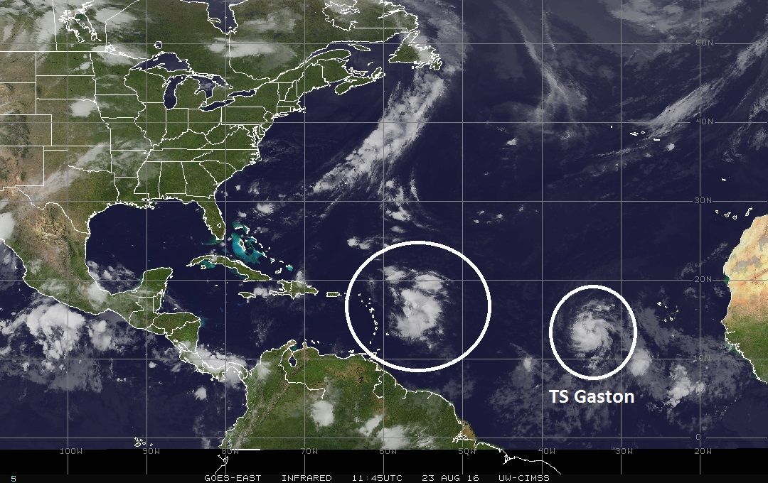 IR satellite image of the tropical Atlantic Ocean with area of interest circled near the Leeward Islands and Tropical Storm Gaston in the far eastern Atlantic; image courtesy University of Wisconsin/CIMSS