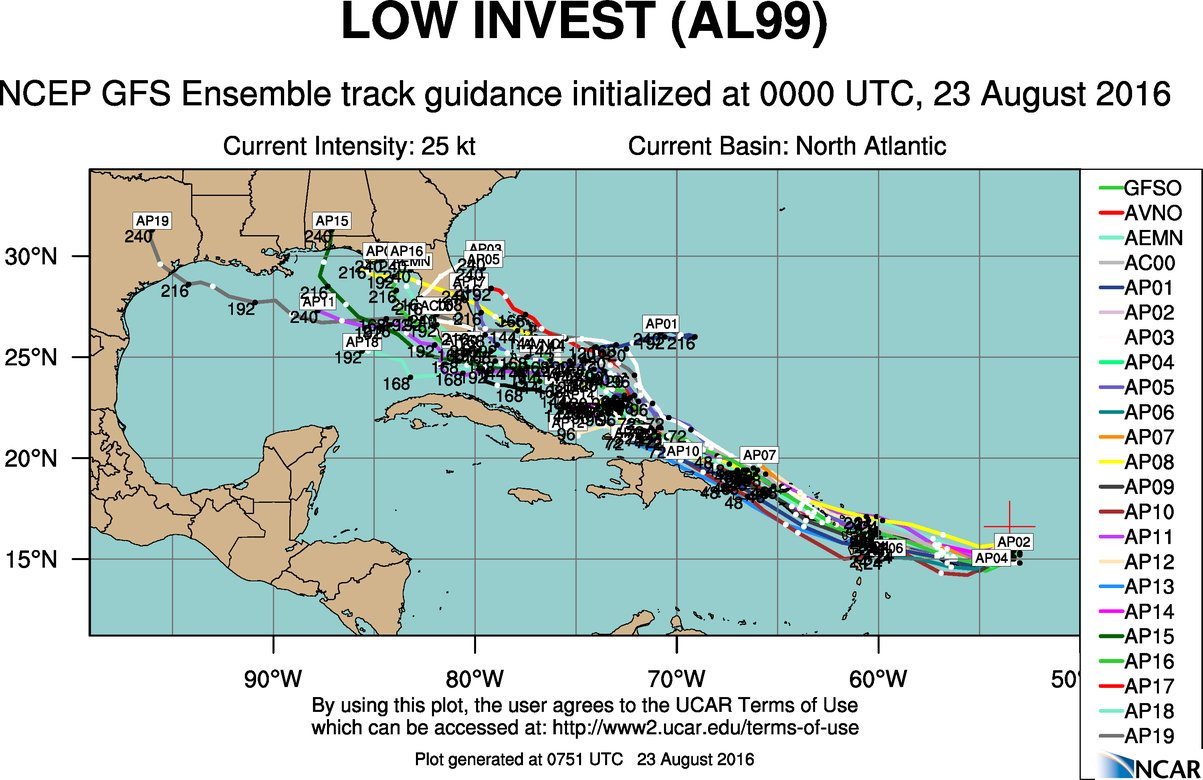 """Compilation of predicted storm tracks from numerous computer models with general agreement that Florida could be visited by """"Hermine""""; courtesy UCAR, NCAR, NOAA/NCEP"""