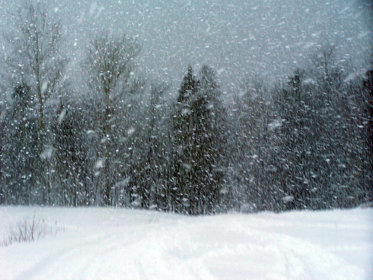 Favorable conditions for normal to above-normal snow this winter