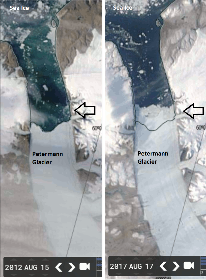 Growth of Greenland's Petermann Glacier during the past five years as revealed by NASA/MODIS satellite imagery from a low point in  August 2012  (left) to  August 2017  (right)