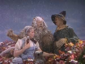 """The scene known for its colorful poppies and falling snow featured a unforgettable quote by the Cowardly Lion: """"unusual weather we're having, ain't it?"""" The """"snow"""" in this scene was actually 100% pure asbestos flakes, which, even by 1939, was well known to be highly carcinogenic. Interestingly, both Bert Lahr (The Cowardly Lion, d. 1967) and Ray Bolger (The Scarecrow, d. 1987) would later die of cancer."""