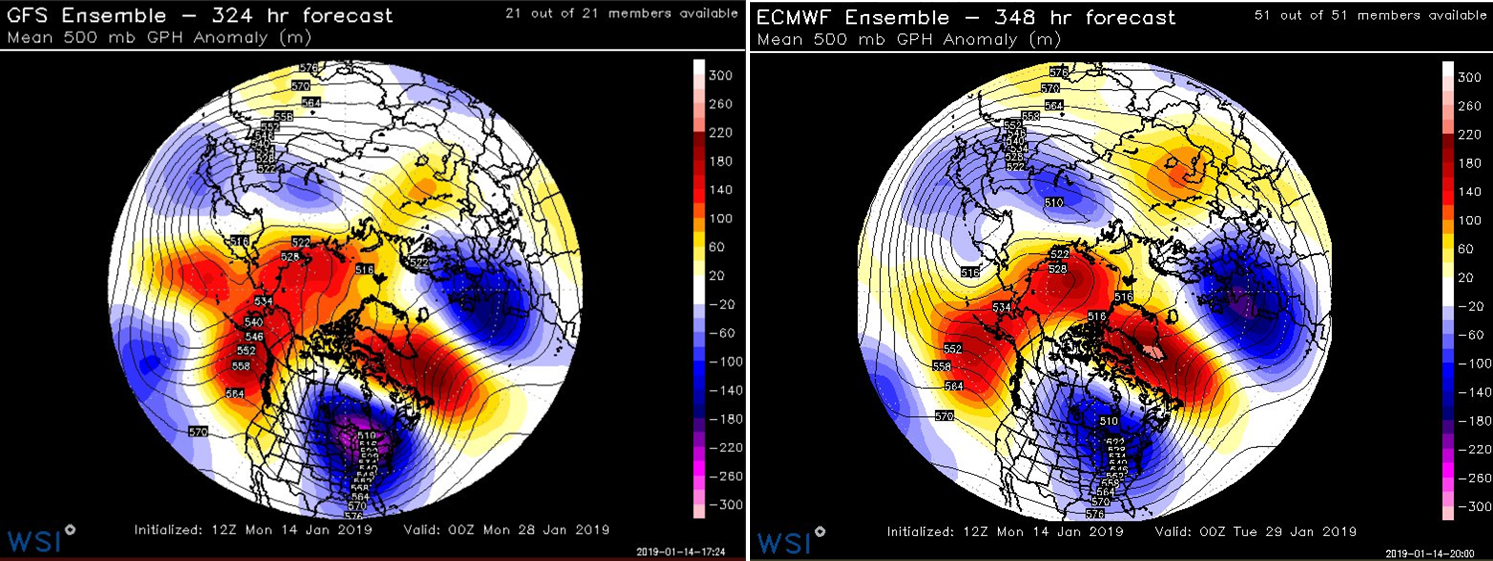 """12Z GEFS (left) and 12Z EPS (right) forecast maps of 500 mb height anomalies for late January both feature deep troughs over the eastern US and Aleutian Islands of Alaska (in blue, purple), strong ridging along the west coast of Canada/US (in orange, red), and """"high-latitude blocking"""" over Greenland and other nearby polar regions (in orange, red)…a snow lovers delight to see this type of pattern; maps courtesy NOAA/EMC, WSI, Inc."""
