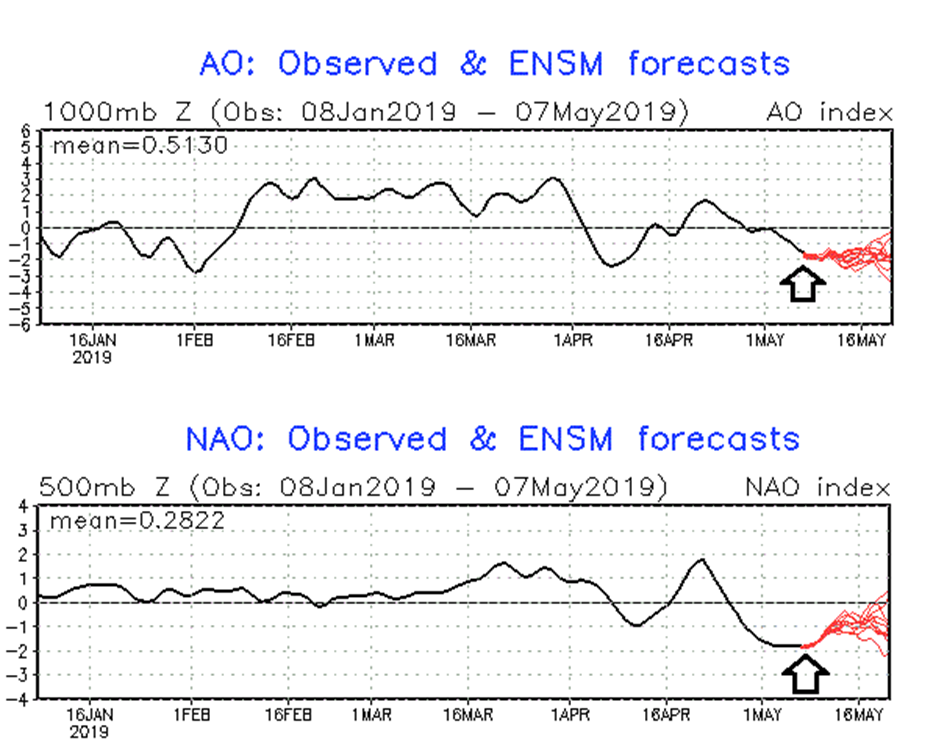 Teleconnection indices of AO (top) and NAO (bottom) are firmaly in negative territory which often favors cold air outbreaks into the middle latitudes - even in the month of May; courtesy NOAA