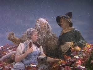 """The scene known for its colorful poppies and falling snow featured a unforgettable quote by the Cowardly Lion: """"unusual weather we're having, ain't it?"""" The """"snow"""" in this scene was actually 100% pure asbestos flakes, which, even by 1939, was well known to be highly carcinogenic. Both Bert Lahr (The Cowardly Lion, d. 1967) and Ray Bolger (The Scarecrow, d. 1987) would later die of cancer."""