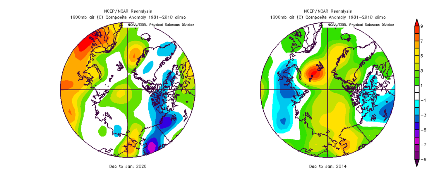 Temperature anomalies are shown for the Arctic region for the December/January time periods from this winter season of 2019-2020 (left) and 2013-2014 (right). Overall temperatures were relatively close-to-normal this past December and January (white represents normal), but averaged above-normal (yellow, green, red) during the same two months in the winter of 2013-2014 when the polar vortex was occasionally displaced to lower latitudes or broken up into multiple pieces. Maps courtesy NOAA/NCEP, NCAR reanalysis