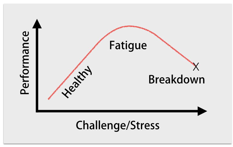Some stress is essential to performance but when it is too high for the individual problems are inevitable