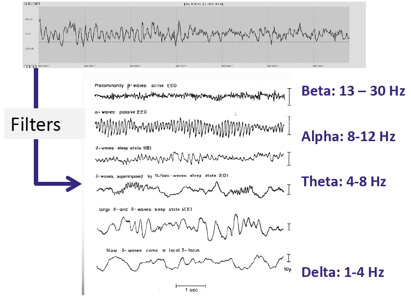 Transforming raw EEG into frequency bands