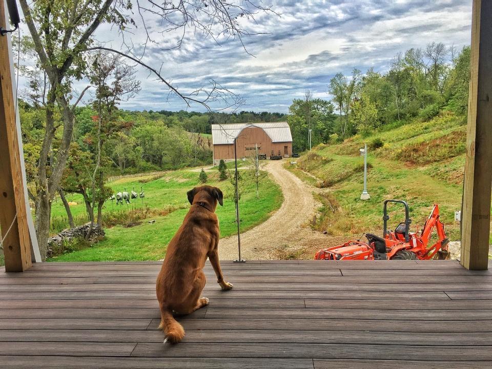 Oakie's View.jpg