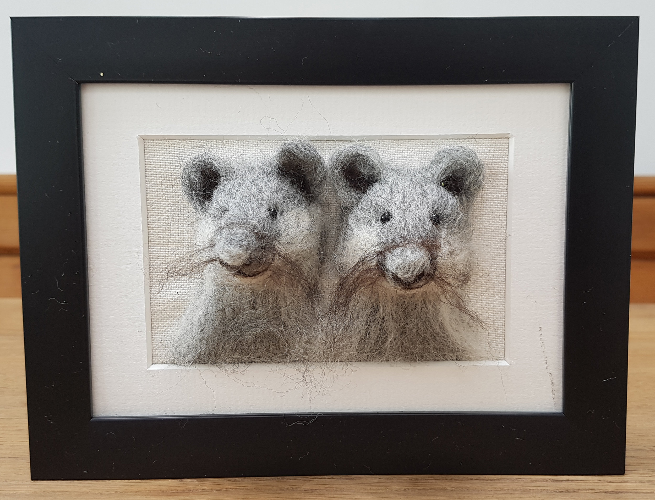 Two mice Fluffyhead.jpg