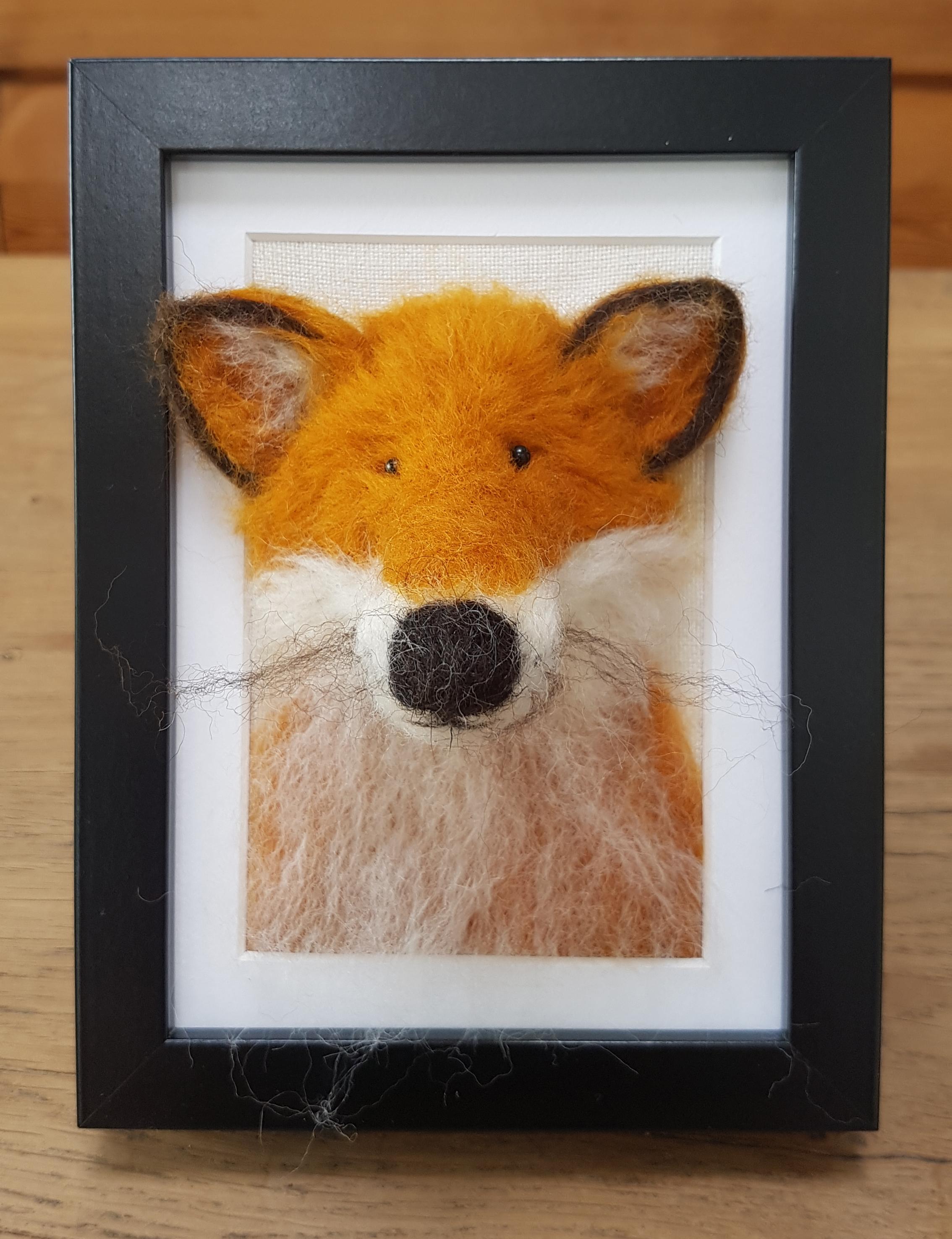 Fox Fluffyhead 1.jpg
