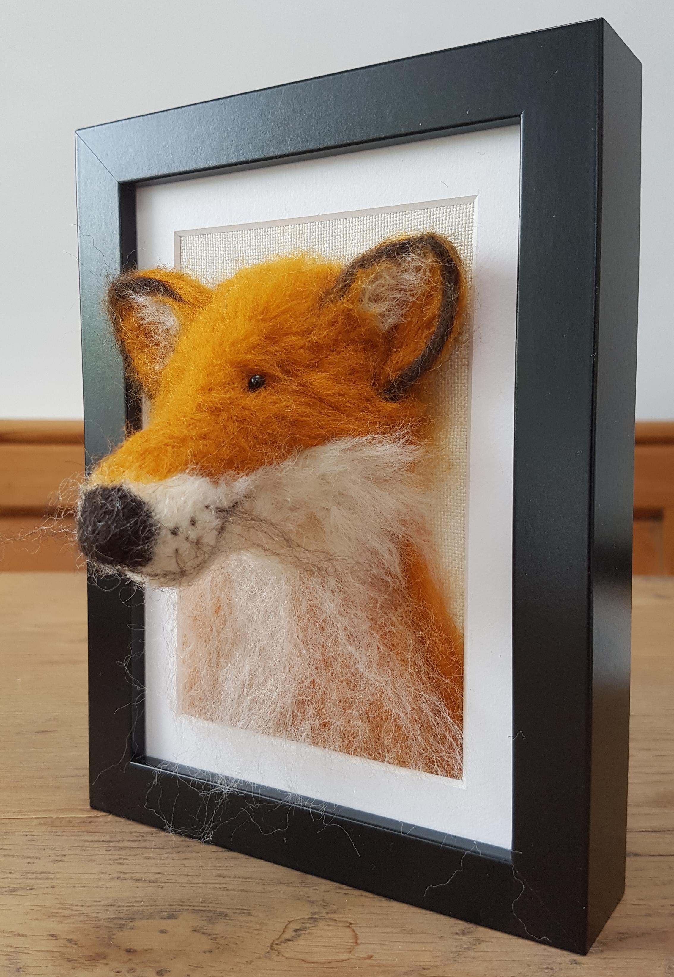 Fox Fluffyhead 2.jpg