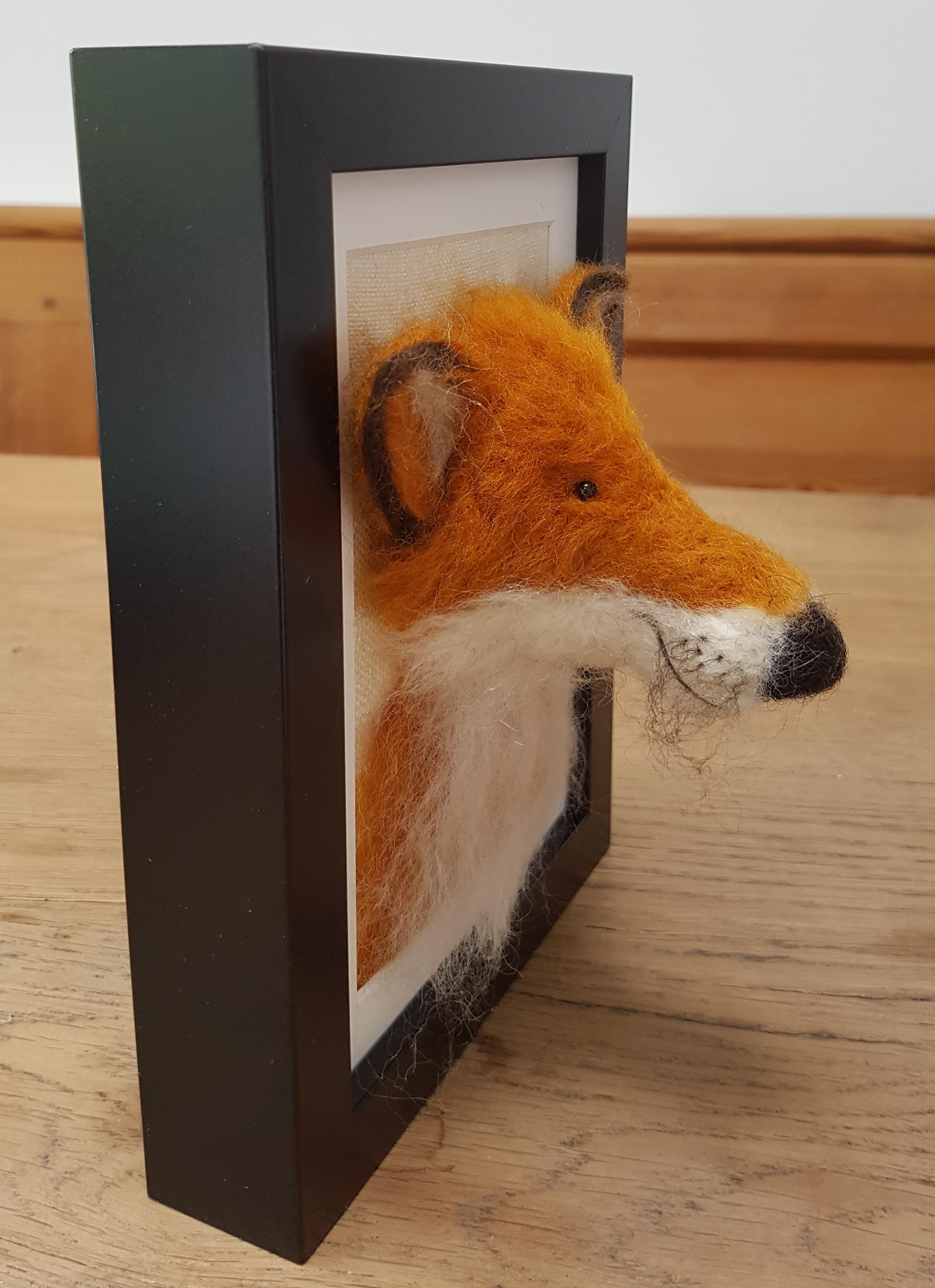 Fox Fluffyhead 4.jpg