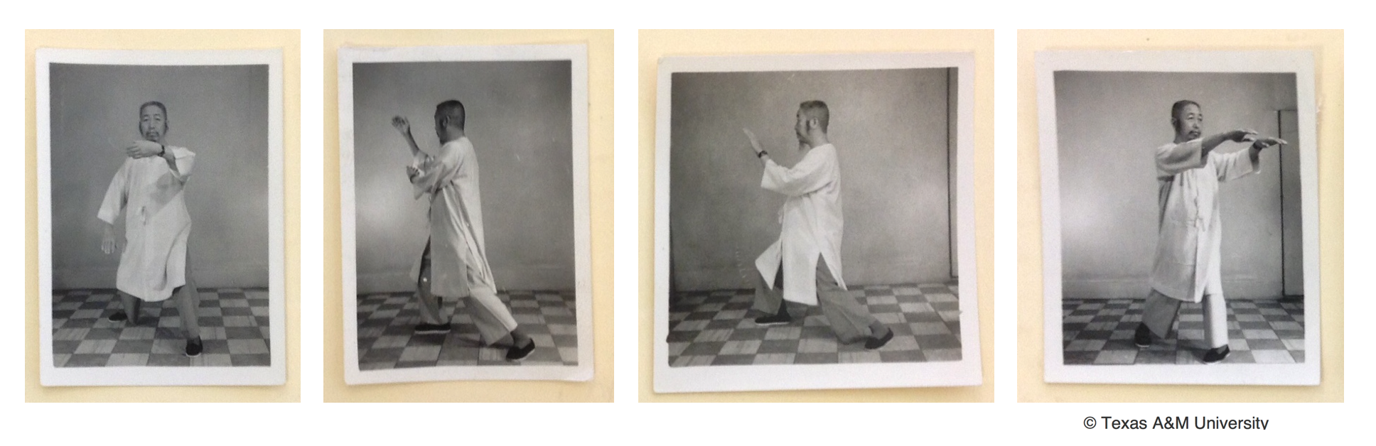 (Postures from the Tai Chi Form by Professor Cheng Man-Ch'ing)