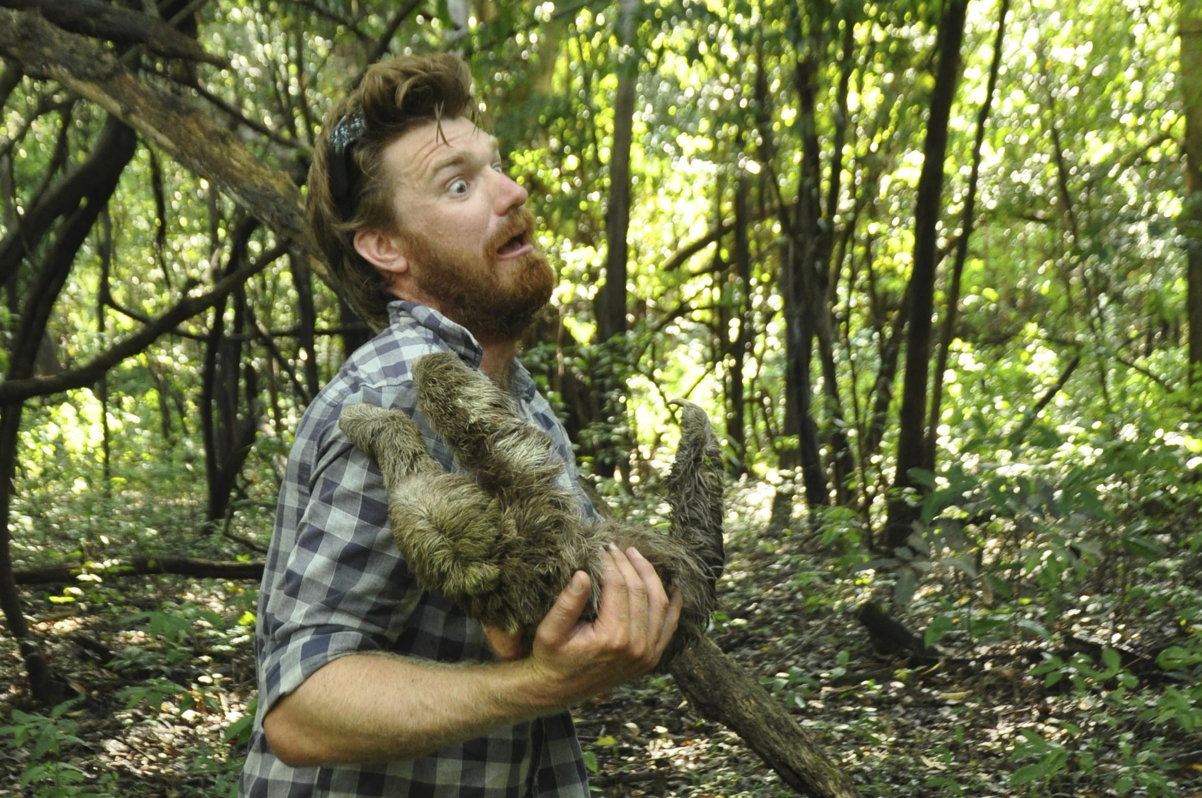 Being attacked by a sloth – not magical!