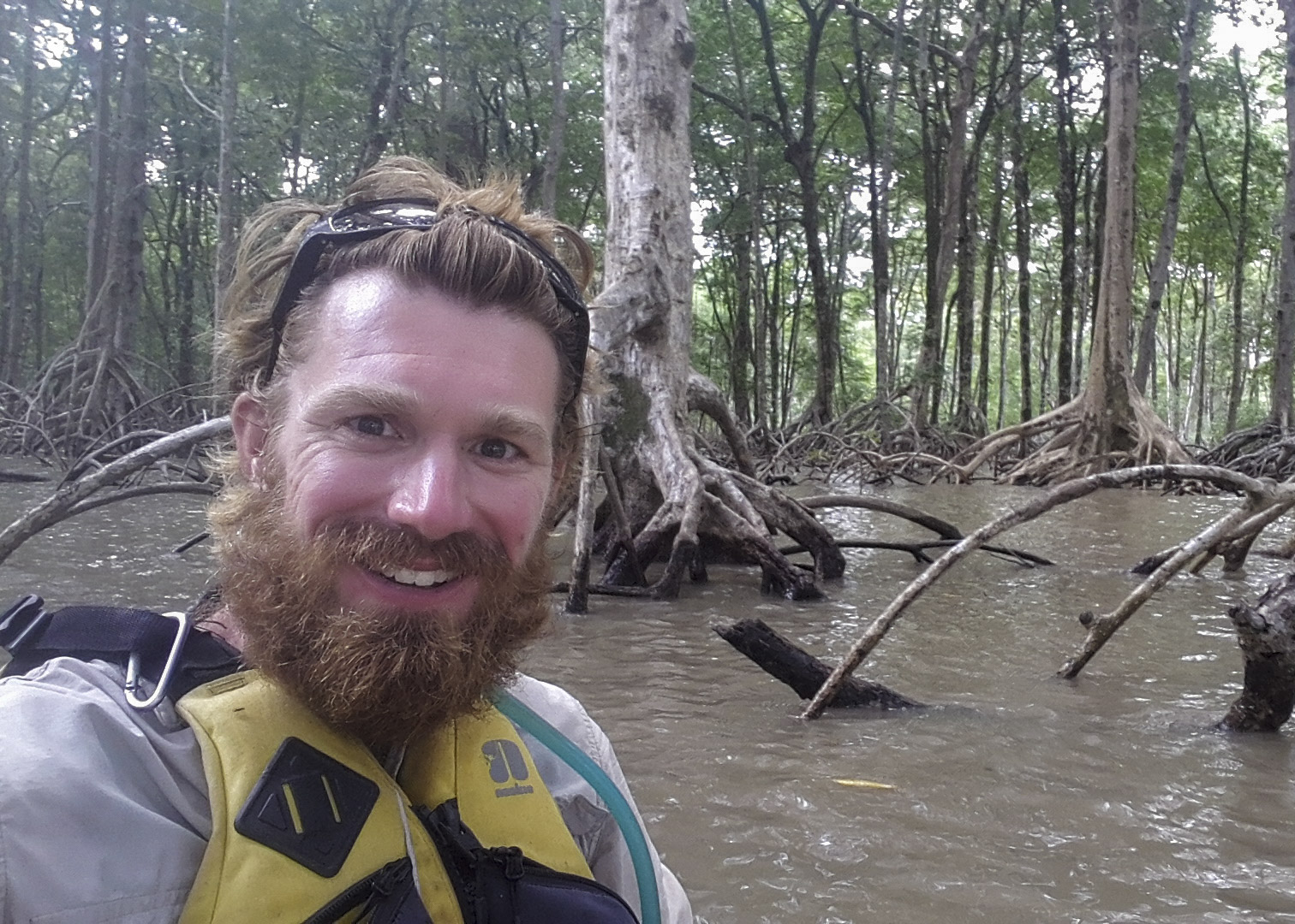 Hanging out in the mangroves