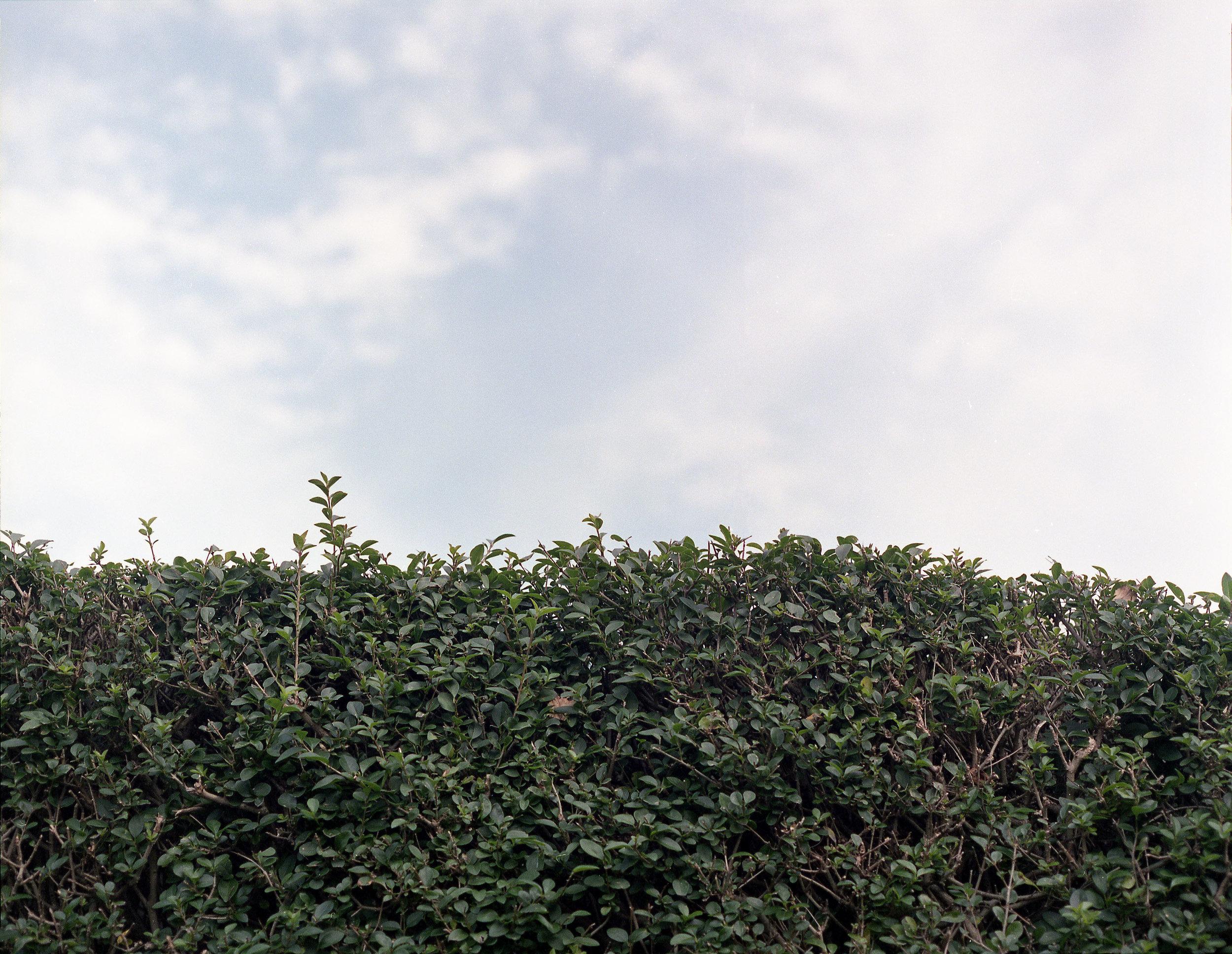 2014-Leeds-009-300.jpg
