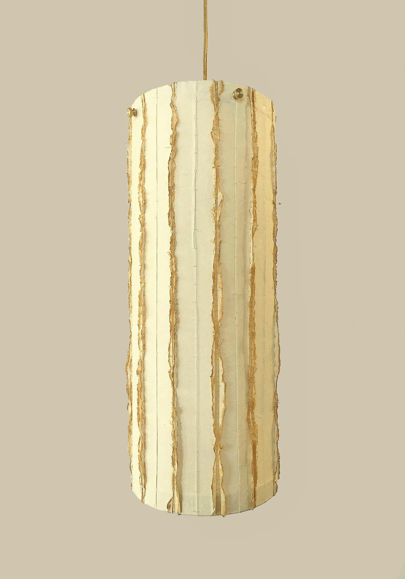 gold noctillius (3).jpg
