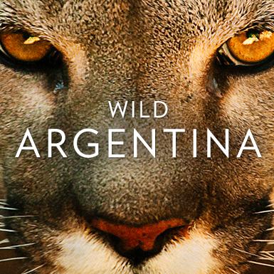 Wild Argentina - Nat Geo