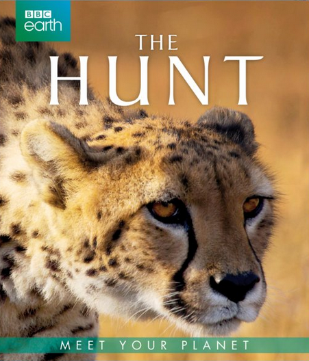 The Hunt - BBC