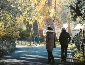 walk therapy.jpg