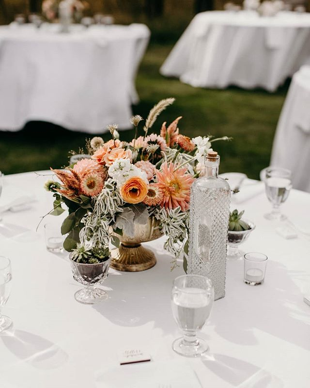 Table details from Karly and Cody's late August wedding at their private residence in Sunriver. Loved this palette and will be sharing more of these florals and the sweetest couple ever soon!  Florals: @petalsflowersbykatie Photography: @nataliepuls . . . . #bendwedding#oregonwedding#weddingflorals#sunriverwedding#vintagebottle#weddingdetails#augustwedding#bendbridalguide#centraloregonwedding#oregonweddingplanner#tabledetails#weddingcenterpieces#prettydetails#