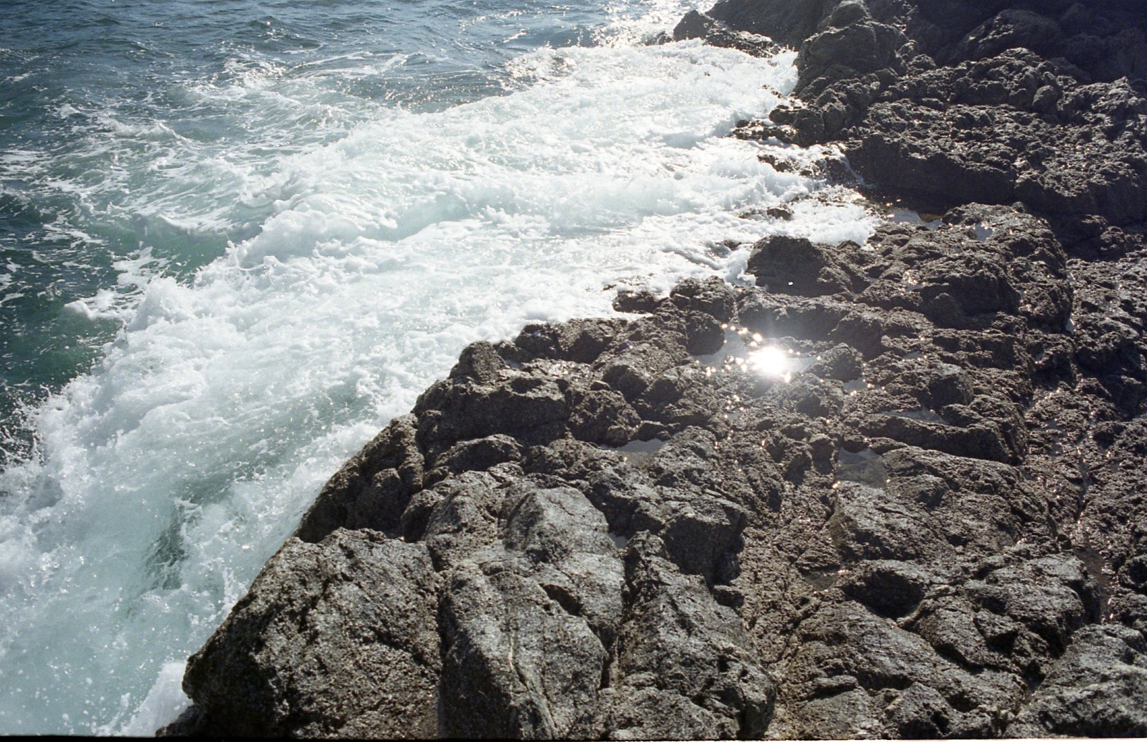 Big Sur Dec 16095.jpg
