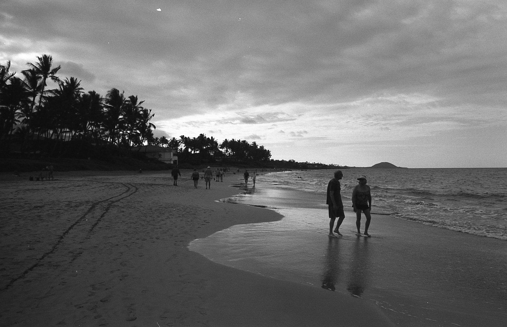 Kodak 400 TX044.jpg