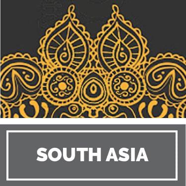 South Asian History