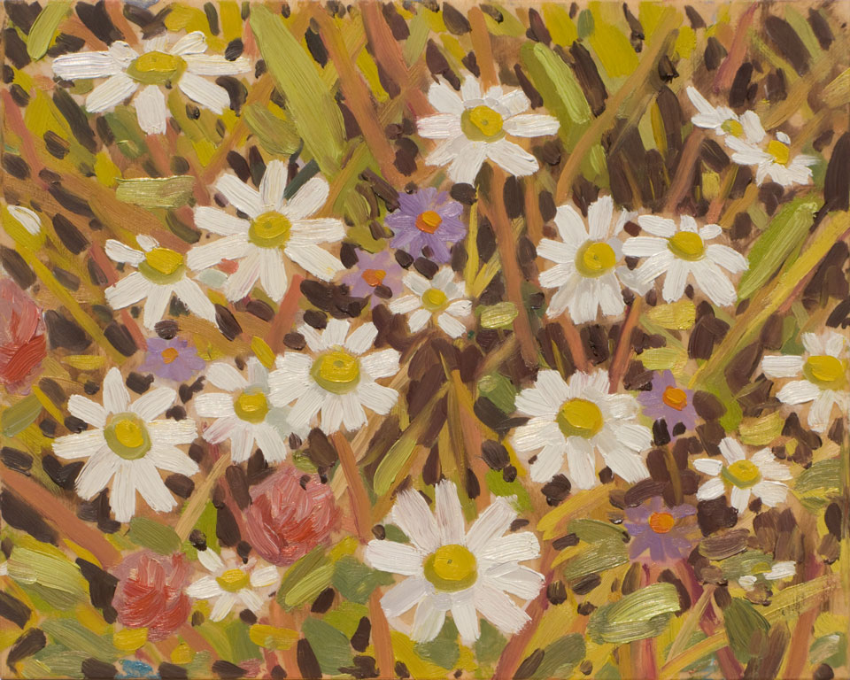 fenton-wildflowers-2011.jpg