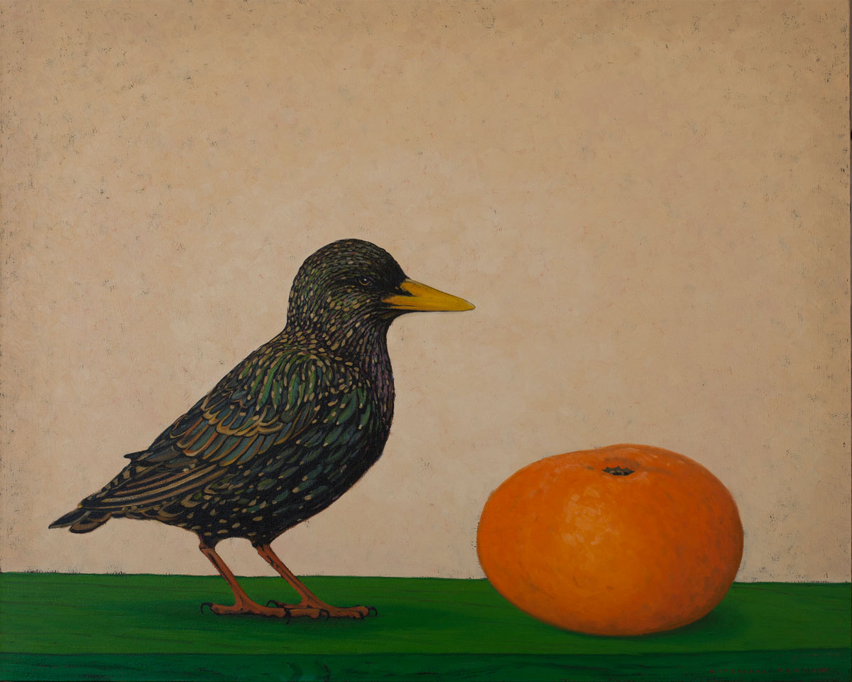 Starling Clementine