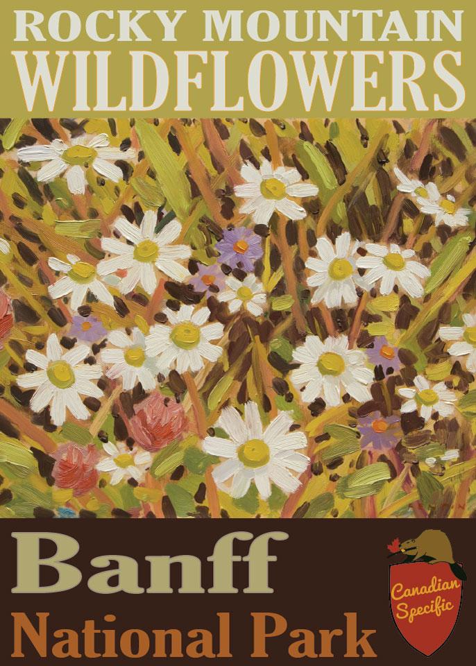 #006 Rocky Mountain Wildflowers