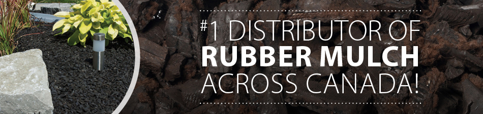Rymar-Rubber-Web-Banners8.jpg