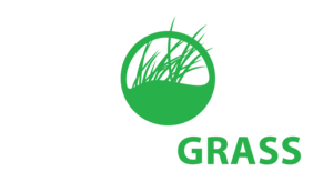 Rymar-Grass.png