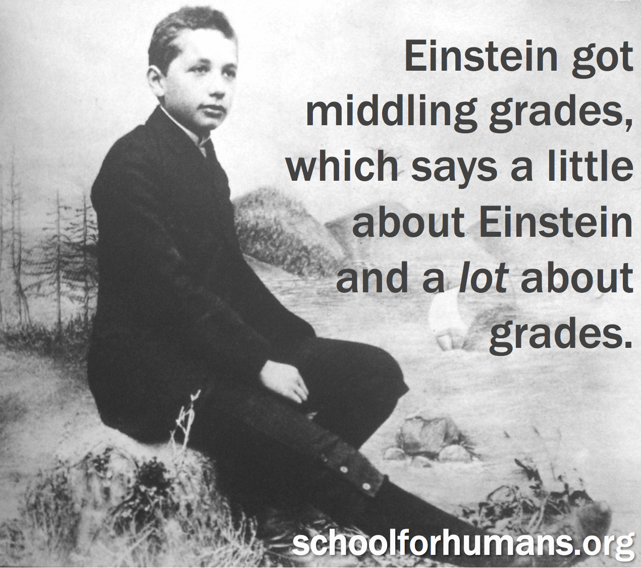 einsteinmiddlinggrades.jpg