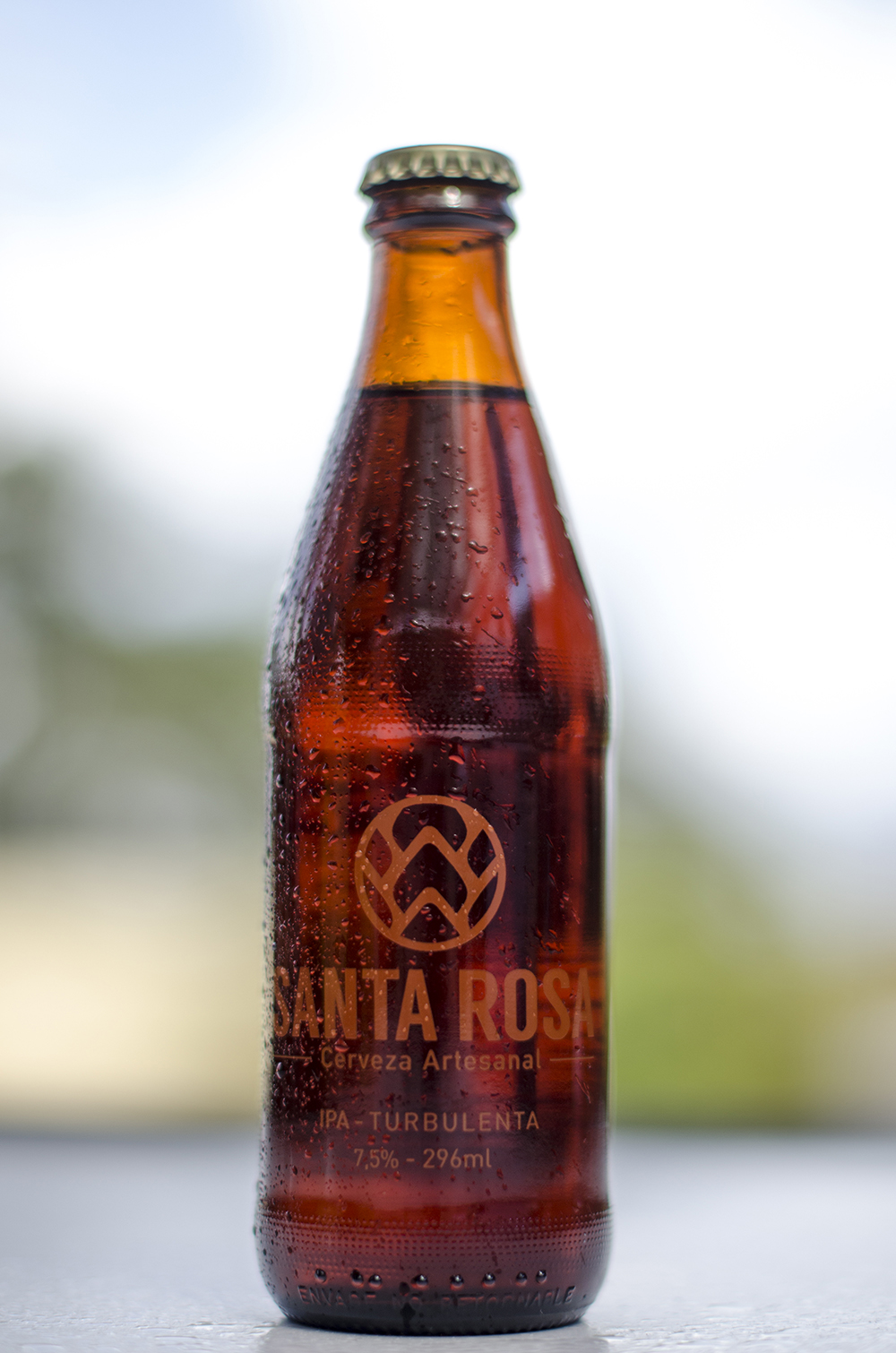 55 Cervecería  - Santa Rosa  IPA Turbulenta  7,5%
