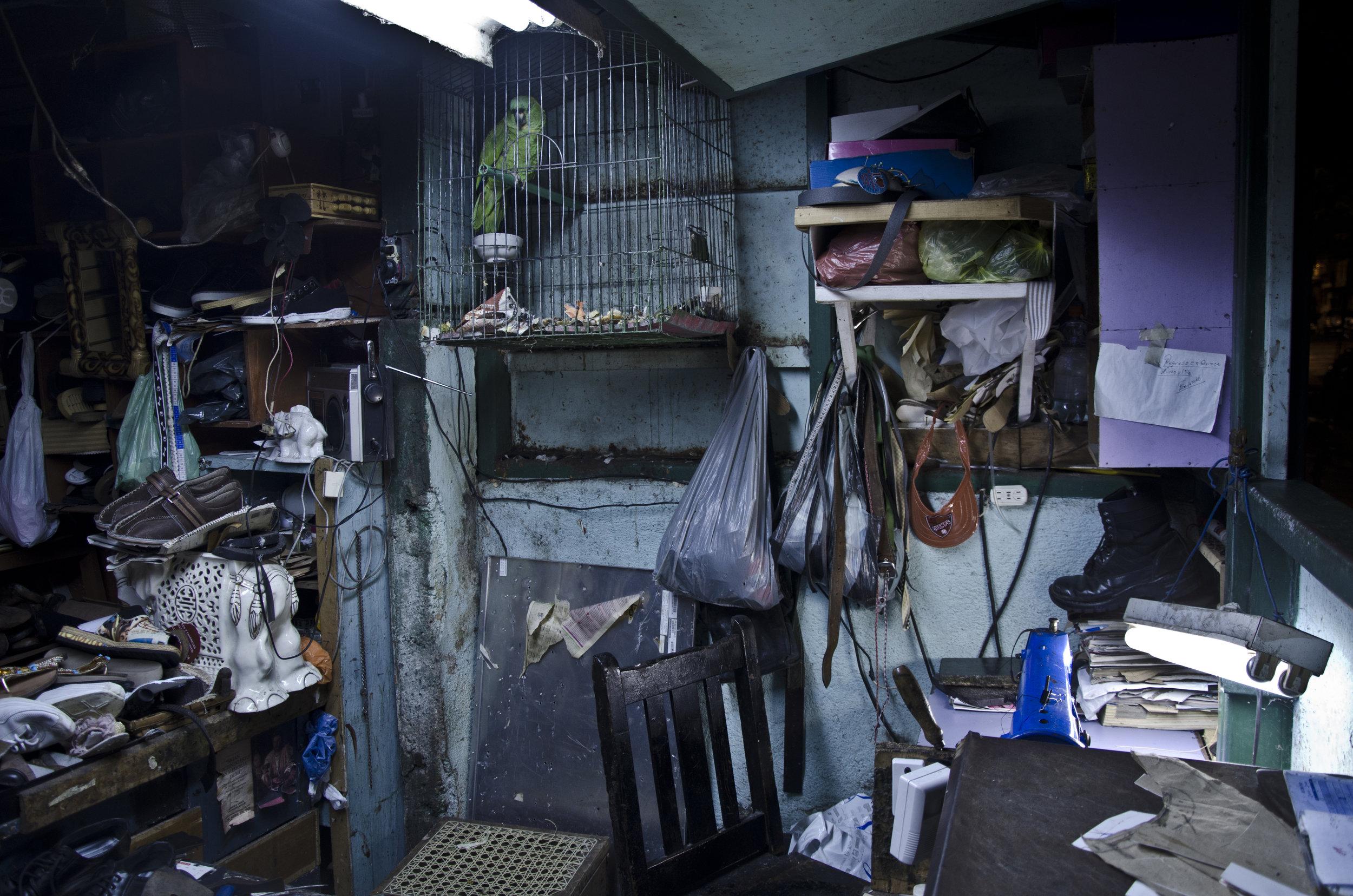 dentro de una zapatería en Costa Rica - Un registro visual y sonoro de un oficio en crisis en tiempos modernos en las capitales latinoamericanas: el de zapatero. Más.