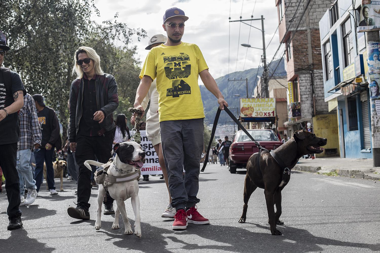 Marcha Marihuana 2019 - perros