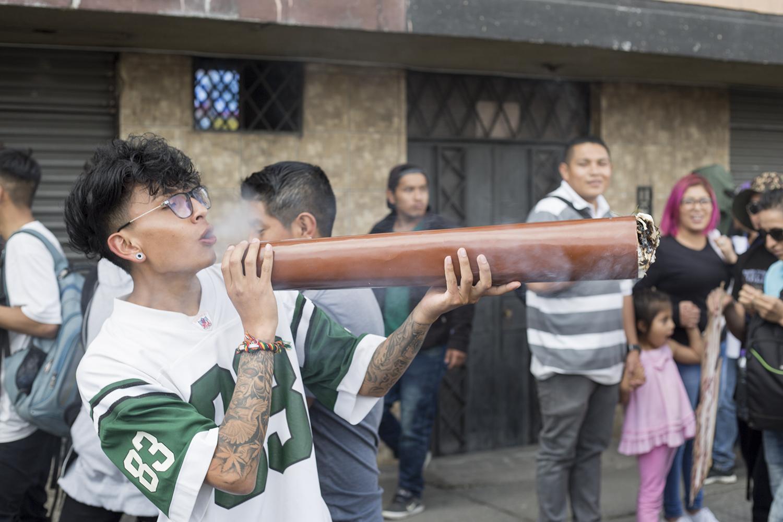 Marcha Marihuana 2019 - porro gigante