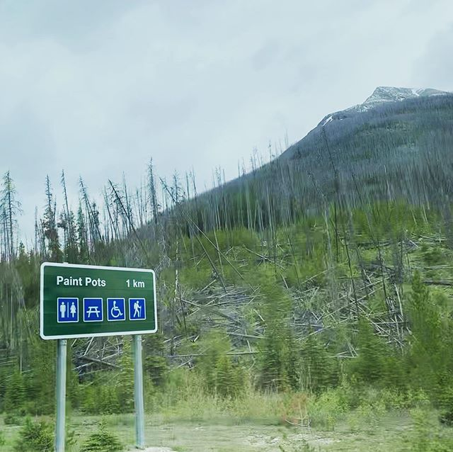 Wayfinding in the #canadian #Rockies . . . #nationalpark #canada #banff #canmore #alberta #bc #britishcolumbia #mountains #wayfinding #vacation #explorealberta #ab #signage