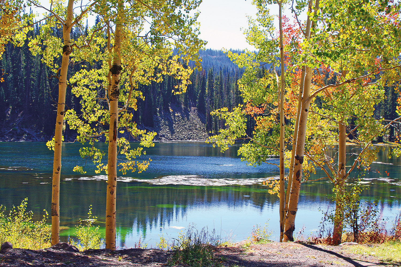 Mesa_Lakes_GJCVB.jpg
