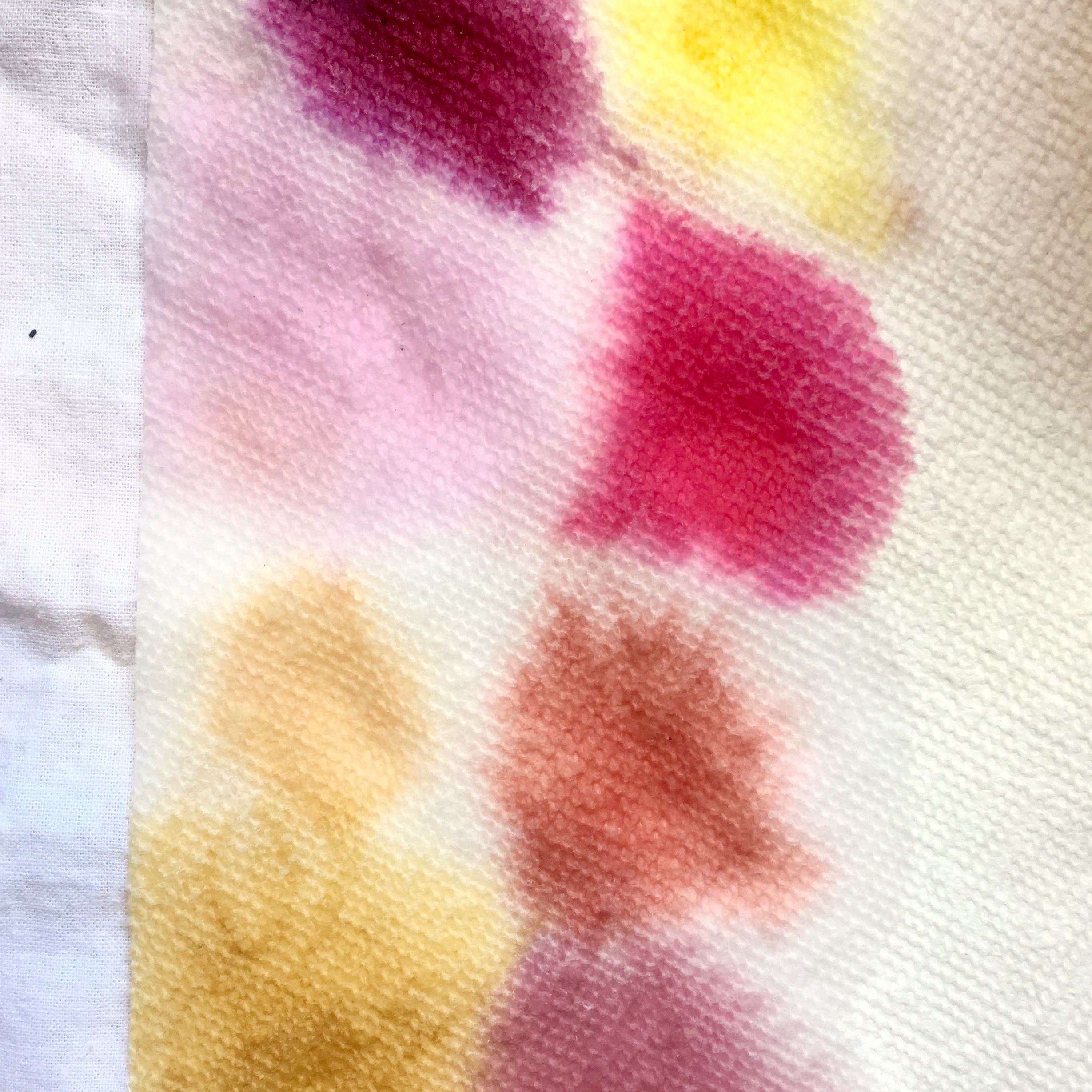 You can test your colors as they boil to see if they are vibrant enough. Place a drop or two on a paper towel. The color that shows up on the paper towel is not necessarily the color that your egg will turn, but it will give you an idea.