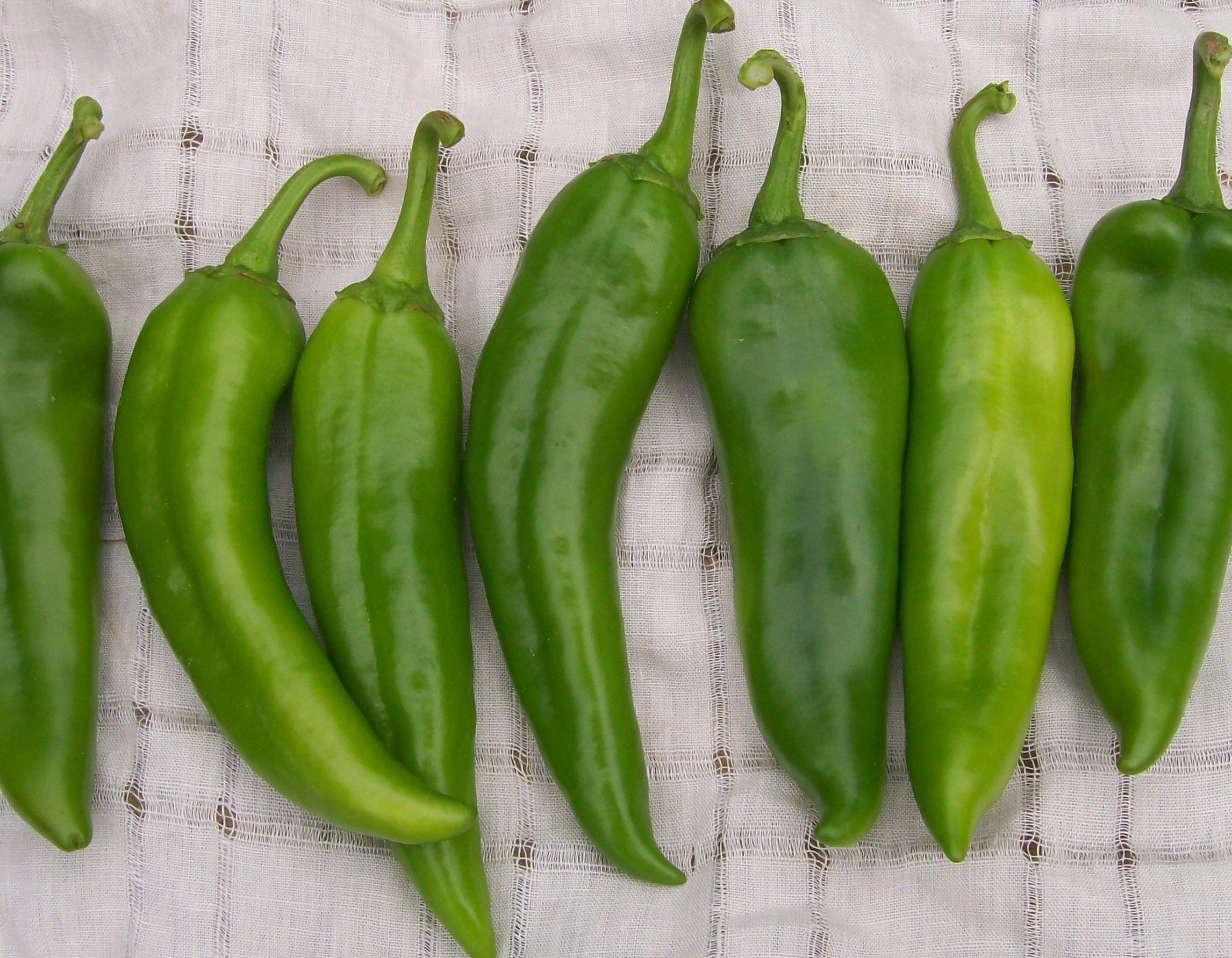 hot-pepper-anaheim_LRG.jpg